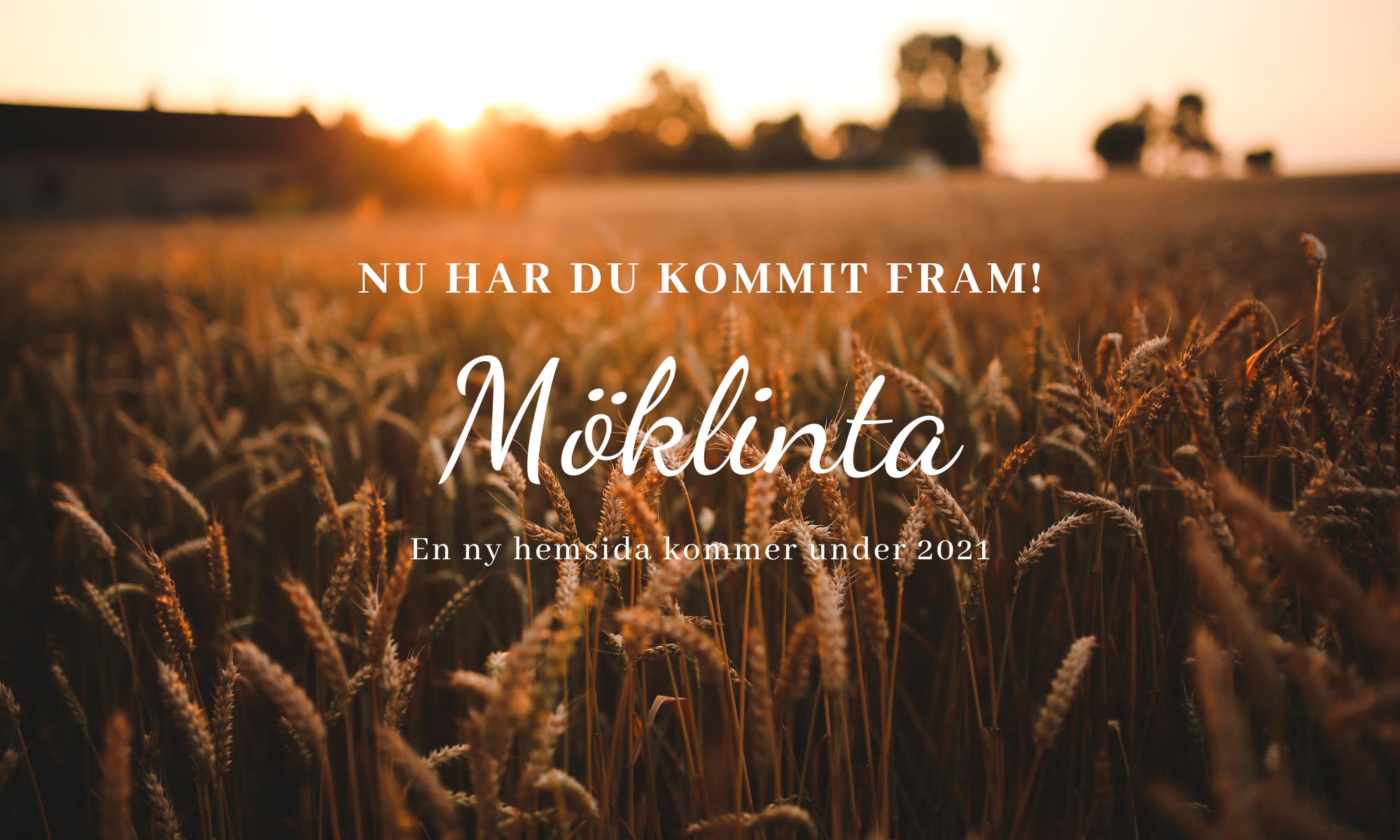 Möklinta.se